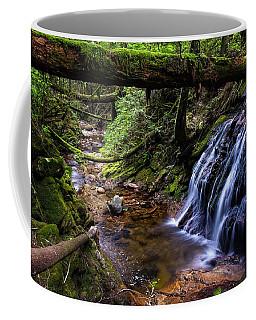 Cliff Gilker Park Coffee Mug