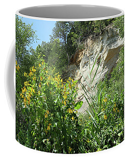 Cliffs And Coneflowers Coffee Mug