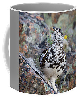Cliffside Showoff Coffee Mug