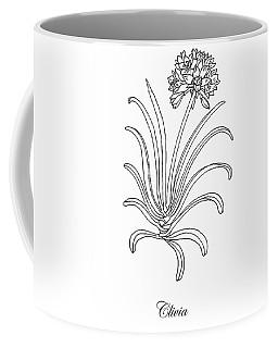 Clivia Flower Botanical Drawing Coffee Mug
