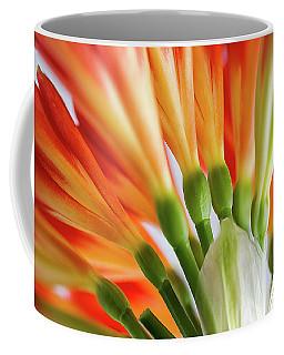 Clivia Miniata 5 Coffee Mug