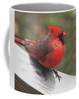 Close To Home Coffee Mug