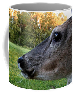 Close Up Coffee Mug
