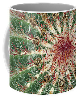 Close-up Of Cactus With Purple Spines Coffee Mug