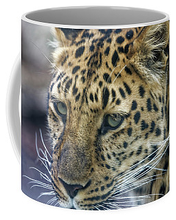 Close Up Of Leopard Coffee Mug
