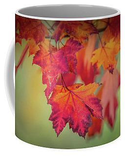Close-up Of Red Maple Leaves In Autumn Coffee Mug