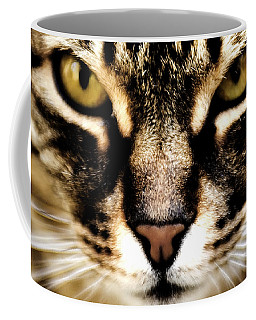 Close Up Shot Of A Cat Coffee Mug