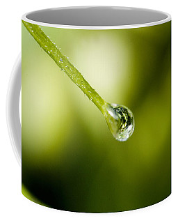 Close View Of A Drop Of Water Coffee Mug
