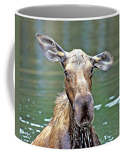 Close Wet Moose Coffee Mug