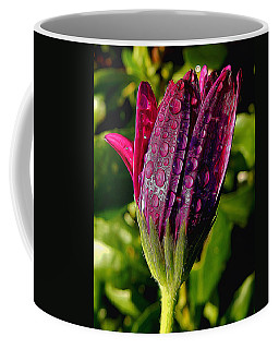 Closed Daisy With Rain Drops Coffee Mug