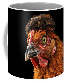 Closeup Ginger Chicken Isolated On Black Background In Profile View Coffee Mug
