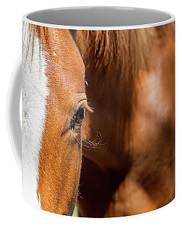 Closeup Horse Eye With Copy Space Coffee Mug