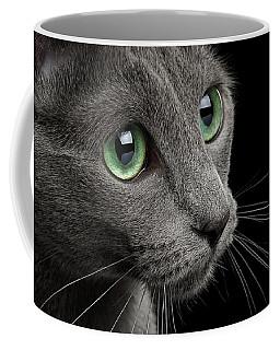 Closeup Russian Blue Coffee Mug