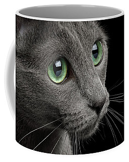 Closeup Russian Blue Coffee Mug