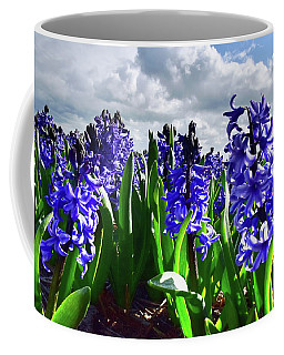 Clouds Over The Purple Hyacinth Field Coffee Mug by Mihaela Pater
