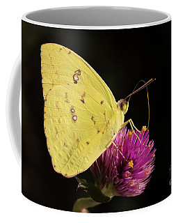 Coffee Mug featuring the photograph Cloudy Or Sunny by Ana V Ramirez