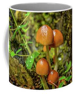Clover Cover  Coffee Mug