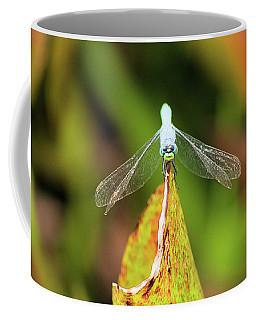 Clown Face Dragonfly Coffee Mug