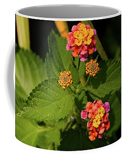 Cluster Of Lantana Flowers Coffee Mug