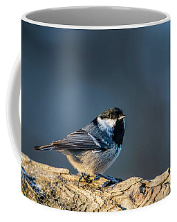 Coffee Mug featuring the photograph Coal Tit's Colors by Torbjorn Swenelius