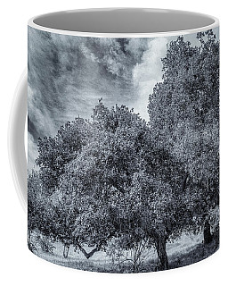 Coast Live Oak Monochrome Coffee Mug