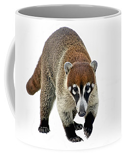 Coatimundi Coffee Mug