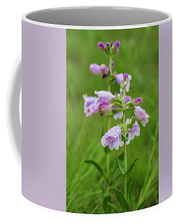 Cobea After Rain Coffee Mug
