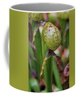 Cobra Lily Coffee Mug