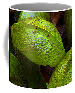 Cobra Lily Love Coffee Mug