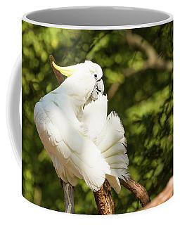 Cockatoo Preaning Coffee Mug