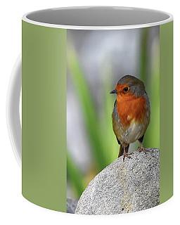 Cocky Robin Coffee Mug
