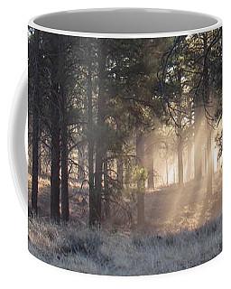 Coconino Dawn Coffee Mug