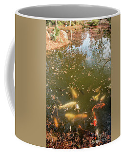 Coi Fish Coffee Mug by Iris Greenwell