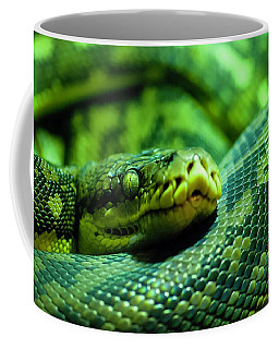 Coiled Calm Coffee Mug