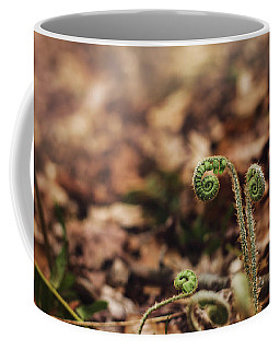 Coiled Fern Among Leaves On Forest Floor Coffee Mug