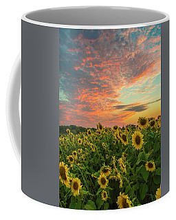 Colby Farm Sunflowers Coffee Mug
