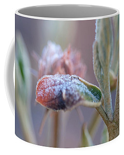 Cold Beginning Coffee Mug