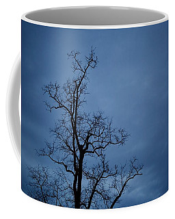 Cold Night Coffee Mug