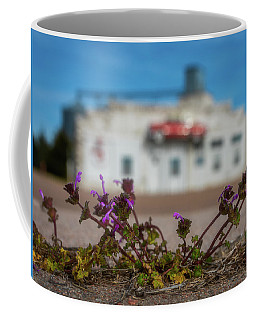 Coffee Mug featuring the photograph Collyer Sidewalk Blooms by Darren White