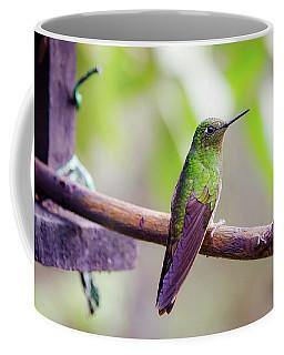 Colombian Hummingbird Coffee Mug