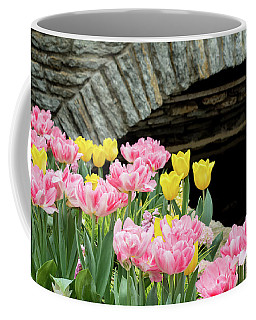 Color Along The Pond Coffee Mug