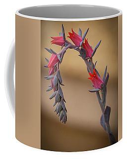 Color And Curve Coffee Mug