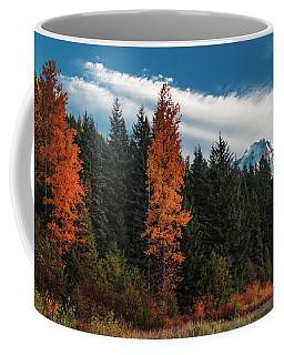 Color At Mt. Hood Coffee Mug