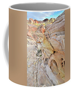 Color At Valley Of Fire State Park Coffee Mug