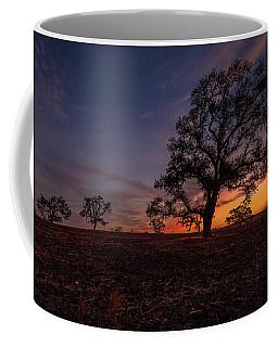 Color Change At First Light Coffee Mug