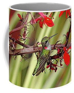 Color Coordinated Hummer Coffee Mug by Debbie Oppermann