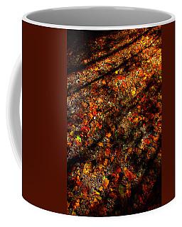 Color Curtain Coffee Mug
