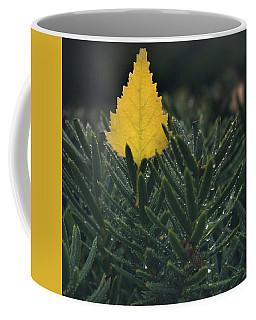 Chilled Coffee Mug