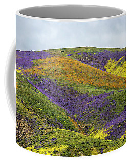 Color Mountain I Coffee Mug by Peter Tellone
