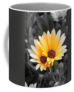 Coffee Mug featuring the photograph Color My Petals by Amanda Eberly-Kudamik